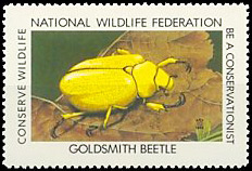 Rutelinae - Cotalpa lanigera - timbre stamp sello estampilla - USA National Wildlife Federation